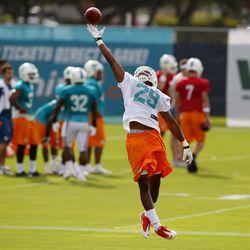 Jul 22, 2013; Davie, FL, USA;  Miami Dolphins cornerback Will Davis (29) can't make a catch during training camp at the Doctors Hospital Training Facility at Nova Southeastern University.