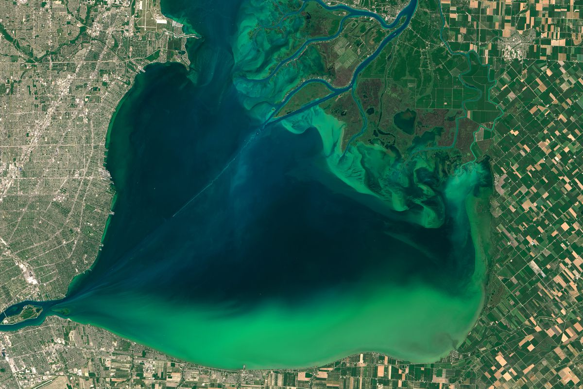 Image result for florida water pollution