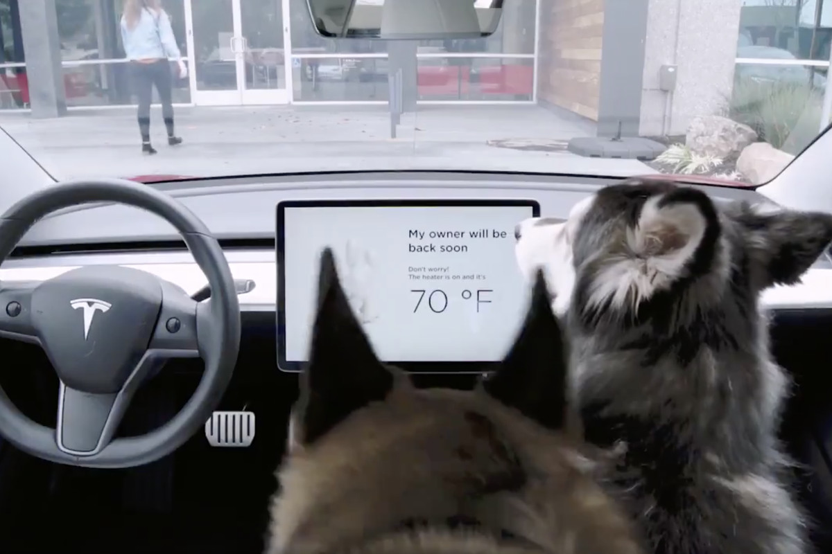 Air Conditioning Filters >> Tesla owner discovers problem with 'Dog Mode' air ...