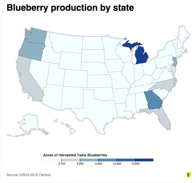 Michigan blueberries win.