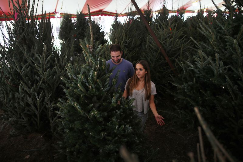 National Christmas Tree Shortage Leads To Higher Prices And Less Inventory