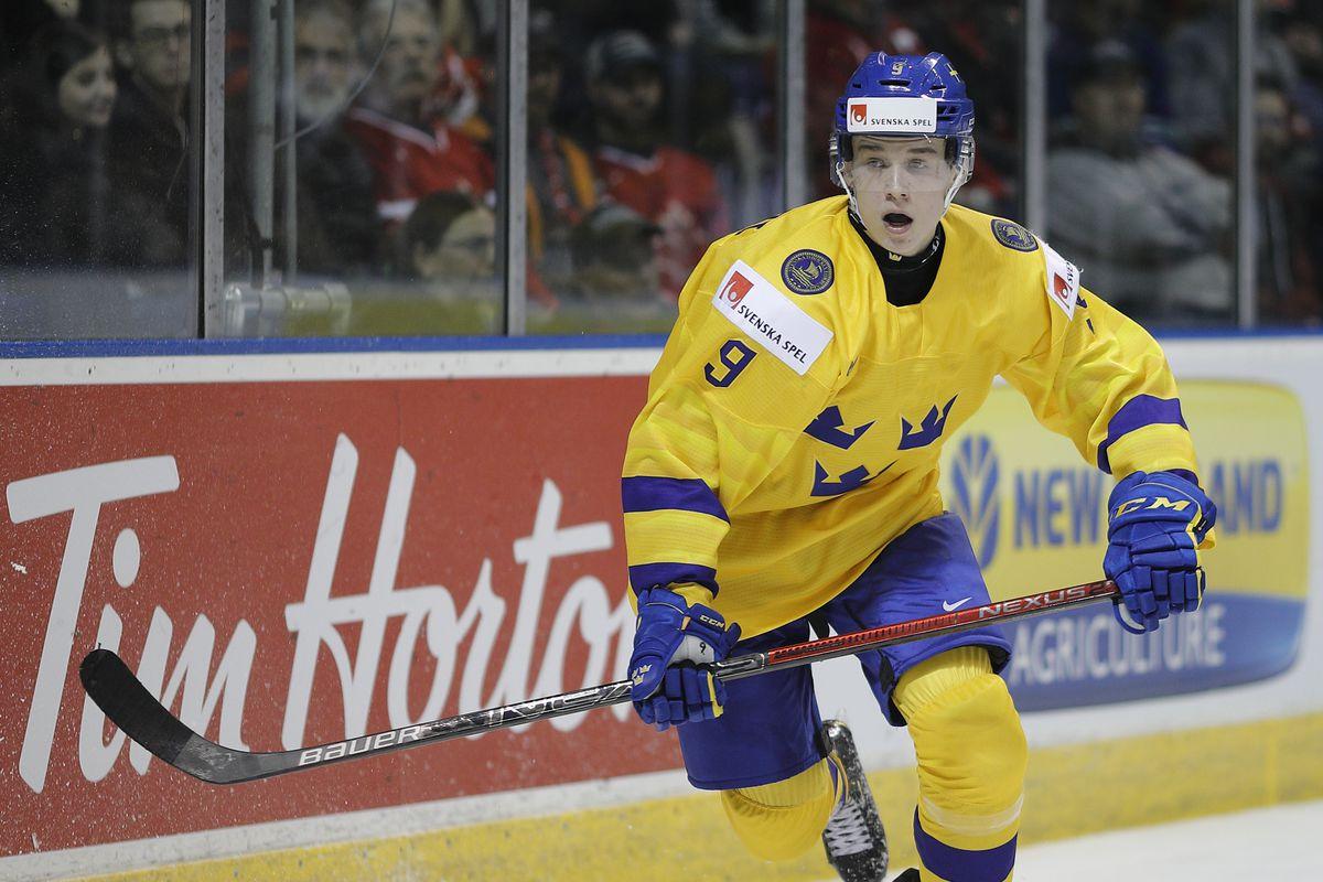svenska fans hockey