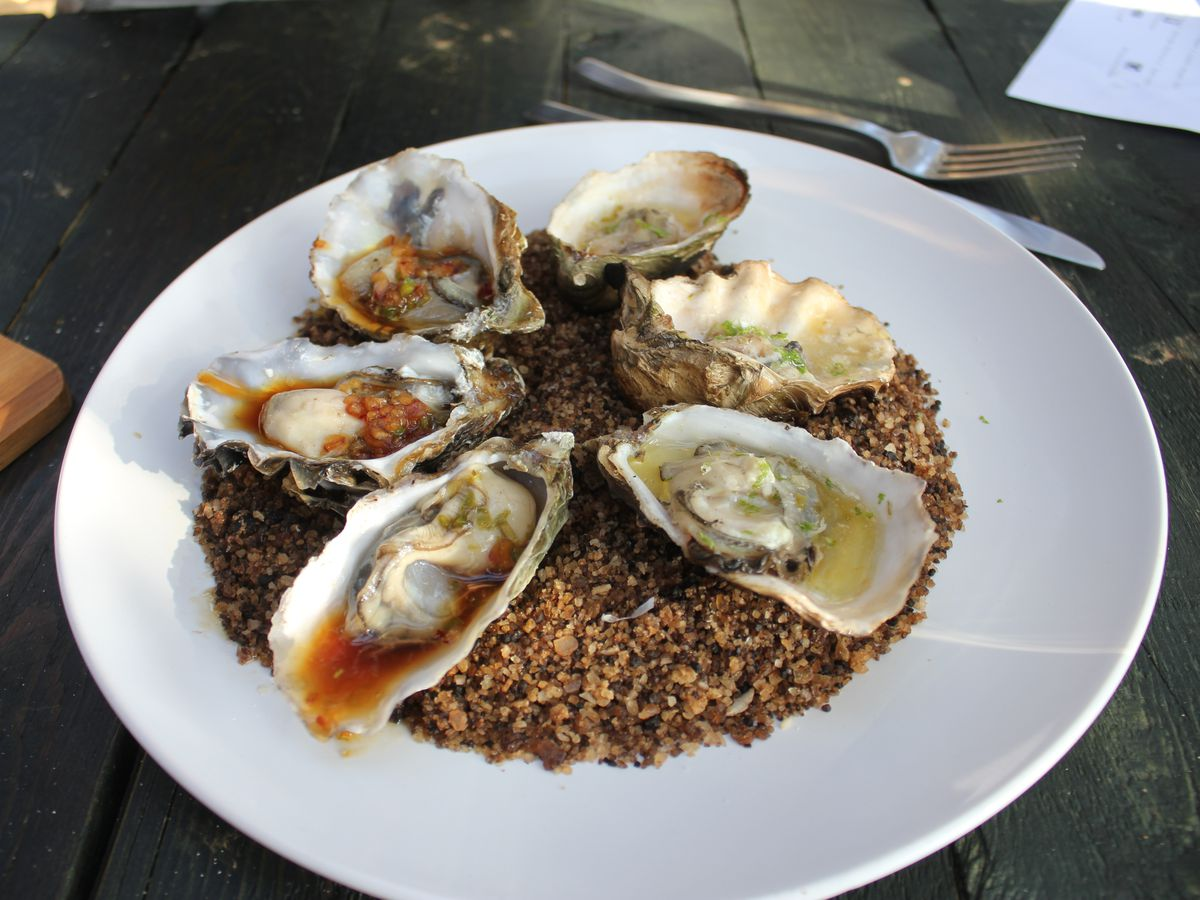 Five oysters on a plate of dark sand