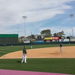 View during the bottom of the fifth inning -