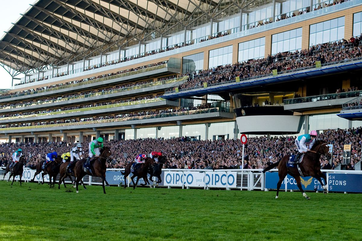 ASCOT, ENGLAND - OCTOBER 15: Frankel wins The Queen Elizabeth II Stakes at Ascot Racecourse on October 15, 2011 in Ascot, England. (Photo by Alan Crowhurst/Getty Images)