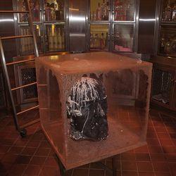 Vladimir Lenin's head, stored on ice.