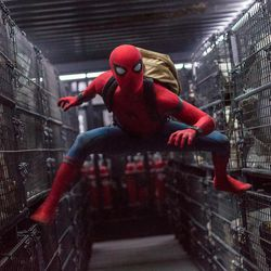 """Tom Holland is Spider-Man in Columbia Pictures' """"Spider-Man: Homecoming."""""""