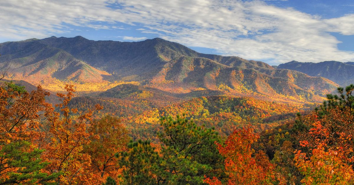 Fall Equinox 8 Things To Know About The First Day Of Autumn Vox