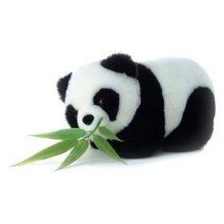 "Panda stuffed animal, <a href=""http://nationalzoostore.tamretail.net/SelectSKU.aspx?skuid=1001989"">$13</a> at the National Zoo shop"