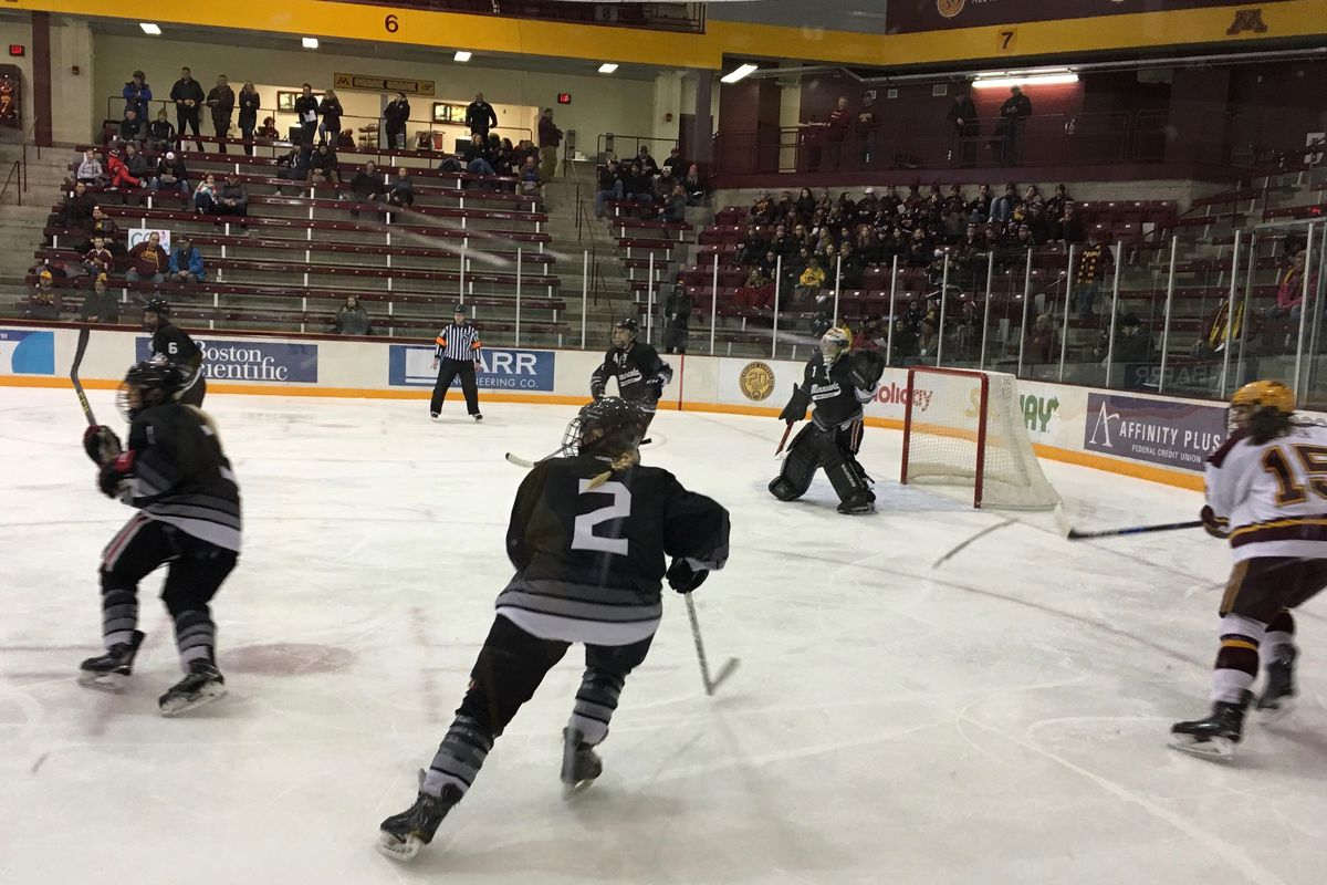 Minnesota Whitecaps playing Minnesota Gophers in an exhibition game at Ridder Arena on 1/5/18.
