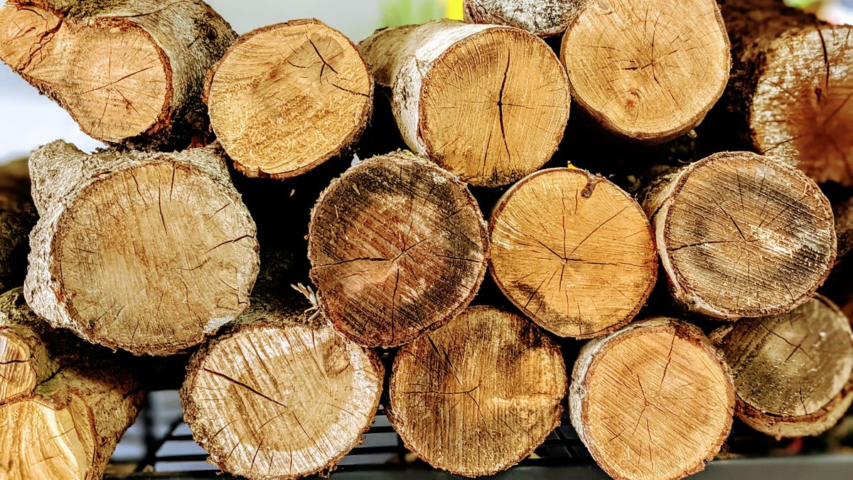 Wood logs from Ray's BBQ in Huntington Park, California.