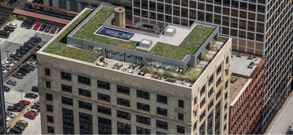 A view of the top of a building downtown with a green roof.