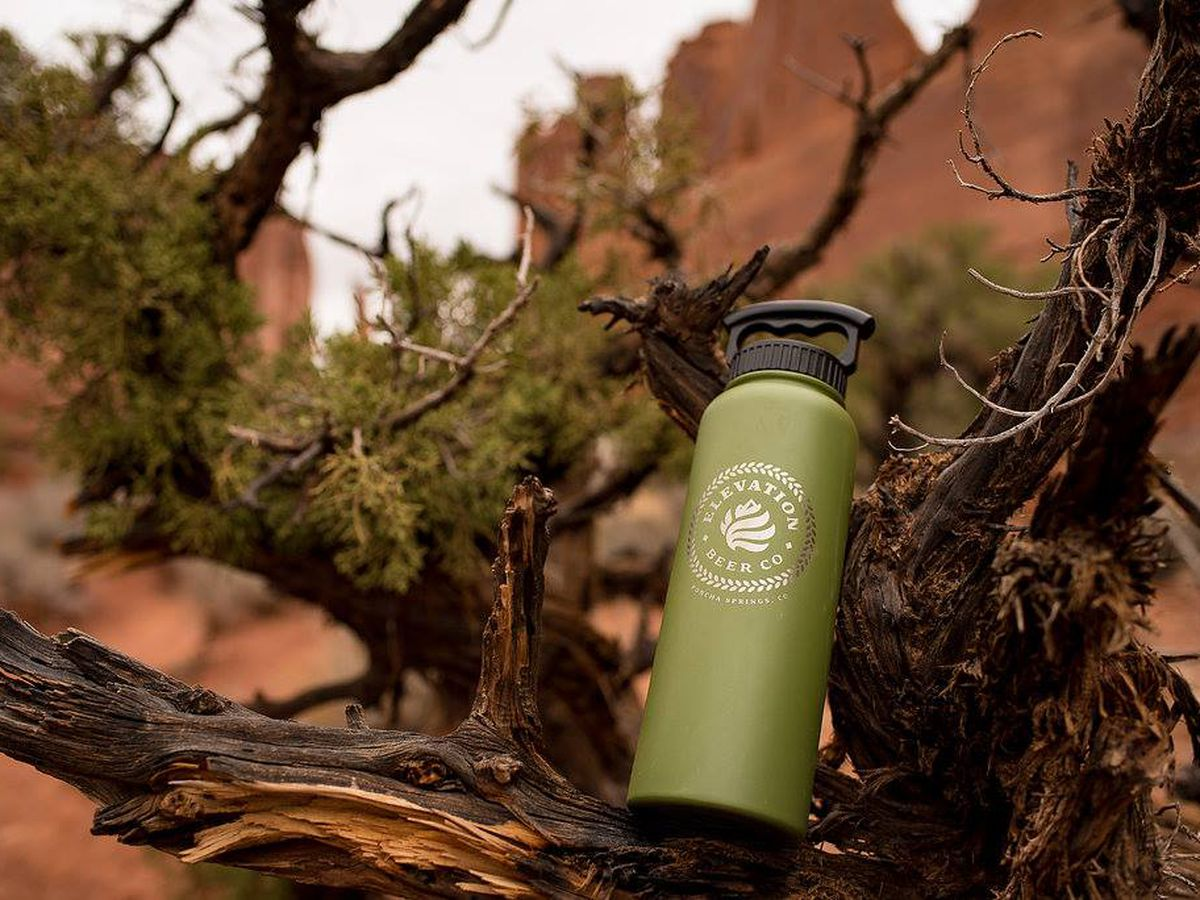 Elevation Beer Co growler in a tree