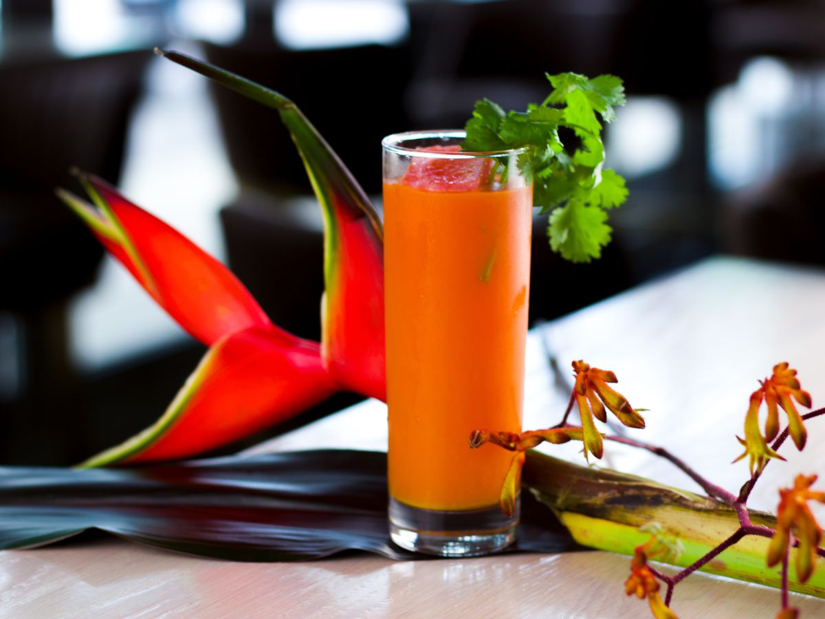 A Collins glass containing a carrot orange-hued drink with coriander leaves sticking out.