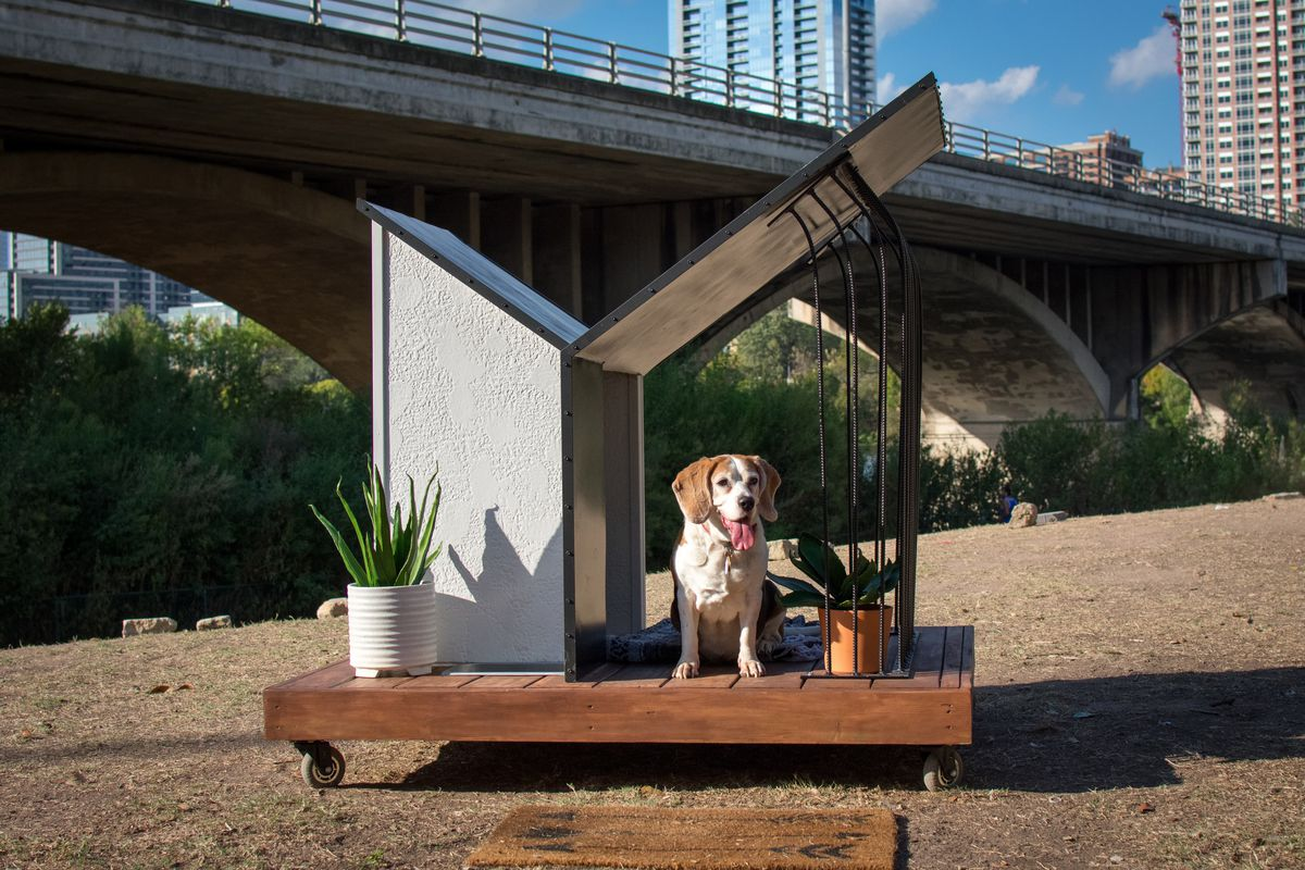 A beagle-type dog sits with its tongue out on a wooden platform on wheels shaded by the propped-open side of a rectangular doghouse with an angled roof. A concrete car bridge and parts of two tall buildings are in the background.