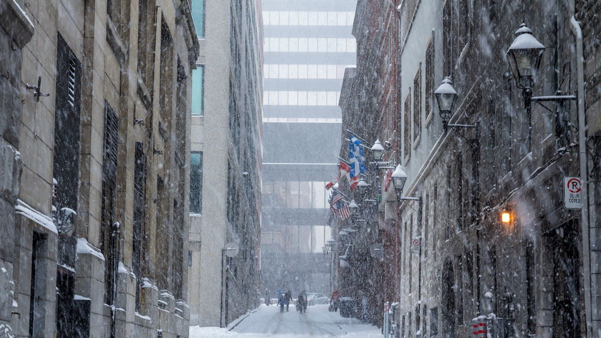 Montreal S Most Anticipated Restaurants And More Winter