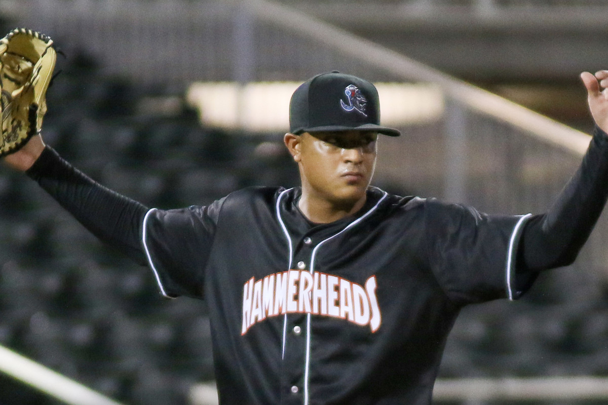 LHP Luis Palacios celebrates the final pitch of his complete game win
