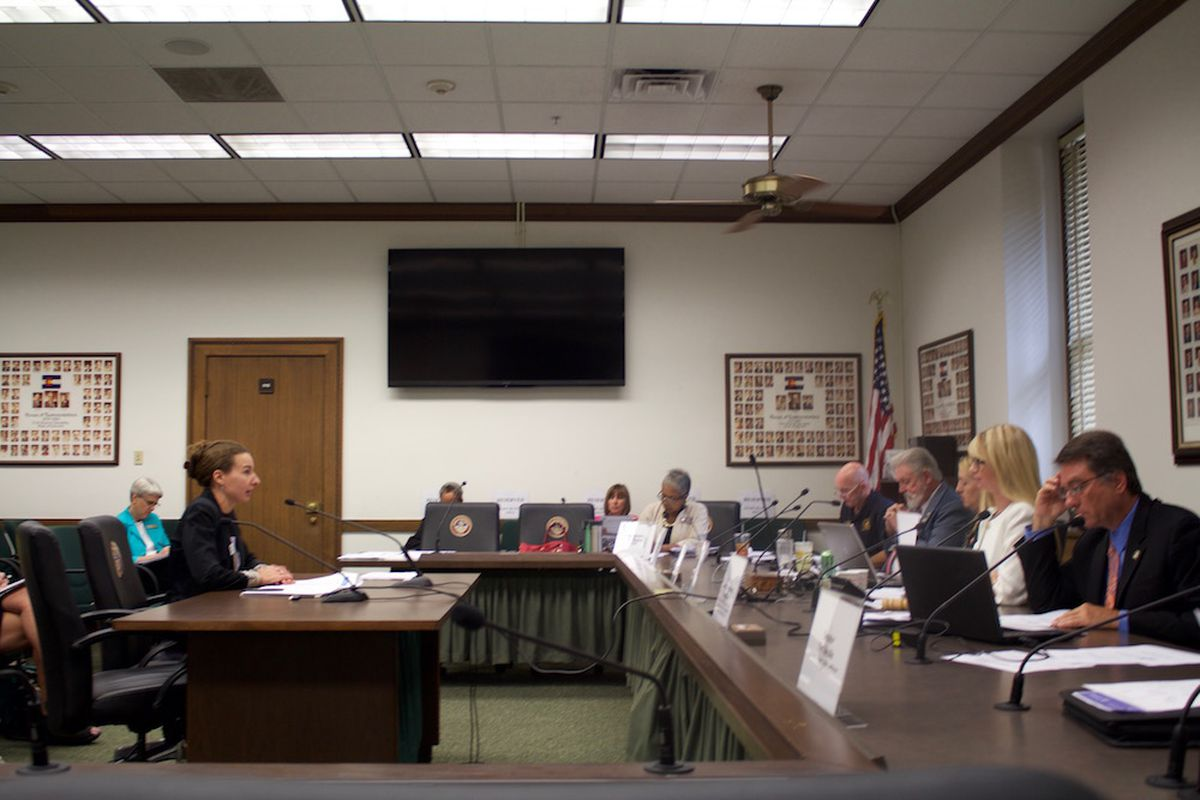 Interim Education Commissioner Katy Anthes addresses a joint committee of lawmakers studying the nation's new education laws.