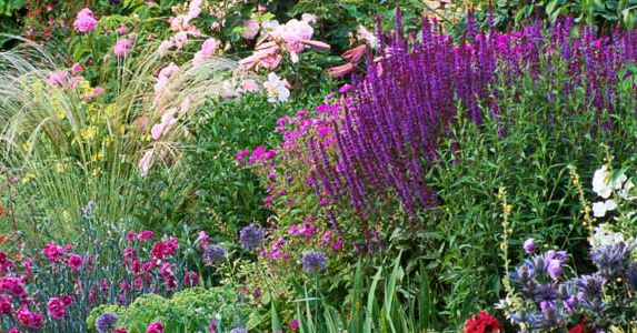 Tried And True Perennials For Your Garden This Old House,What Colours Go With Dark Green Sofa