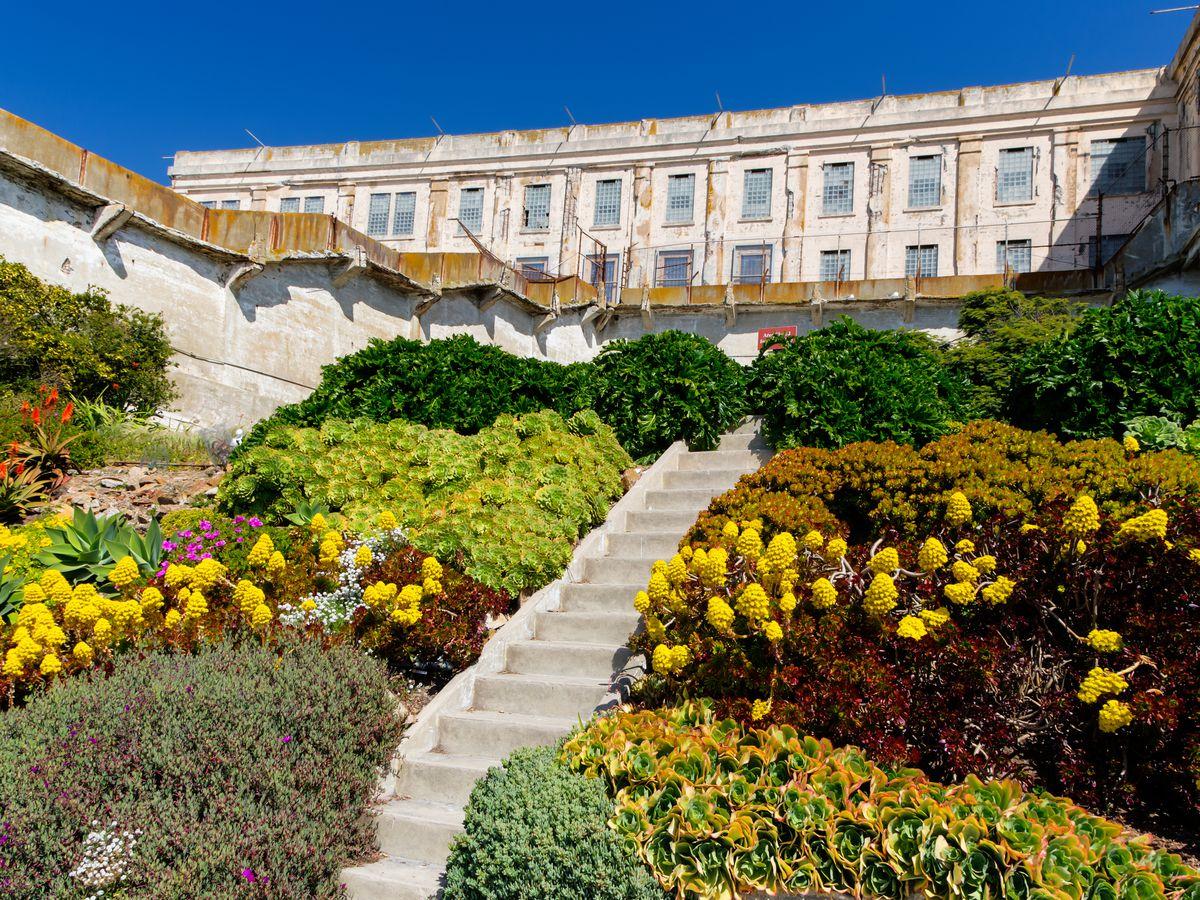 Secret Garden: San Francisco's Best Secret Gardens And Green Spaces
