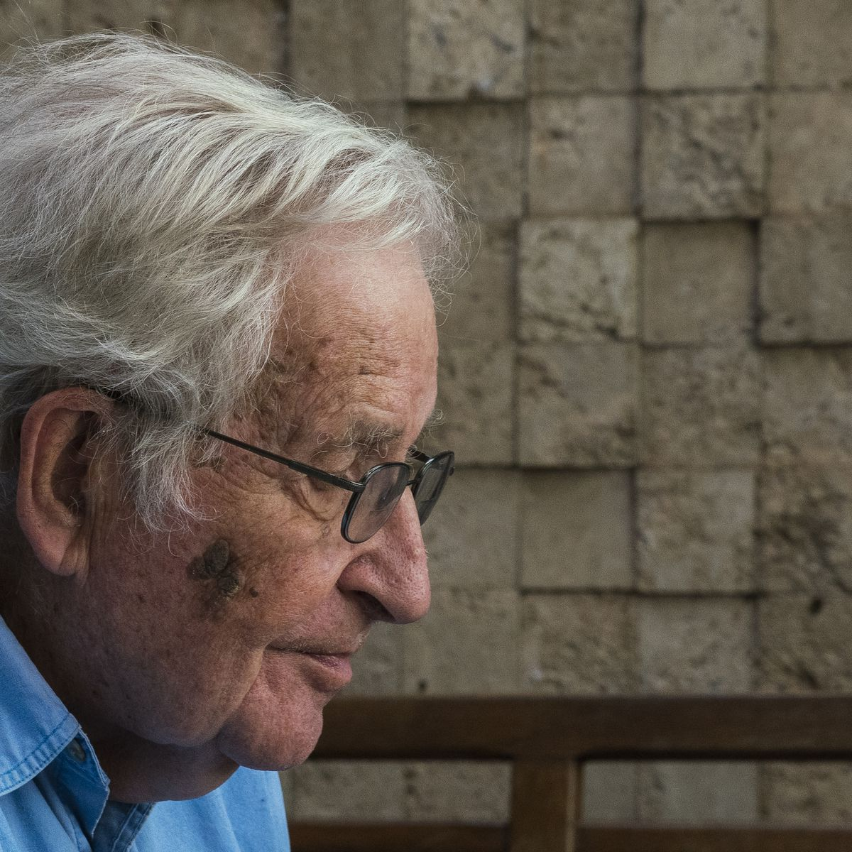 Noam Chomsky in profile