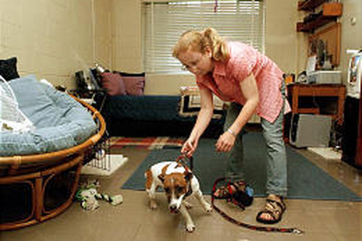College Dorm Oks Furry Roommates Deseret News