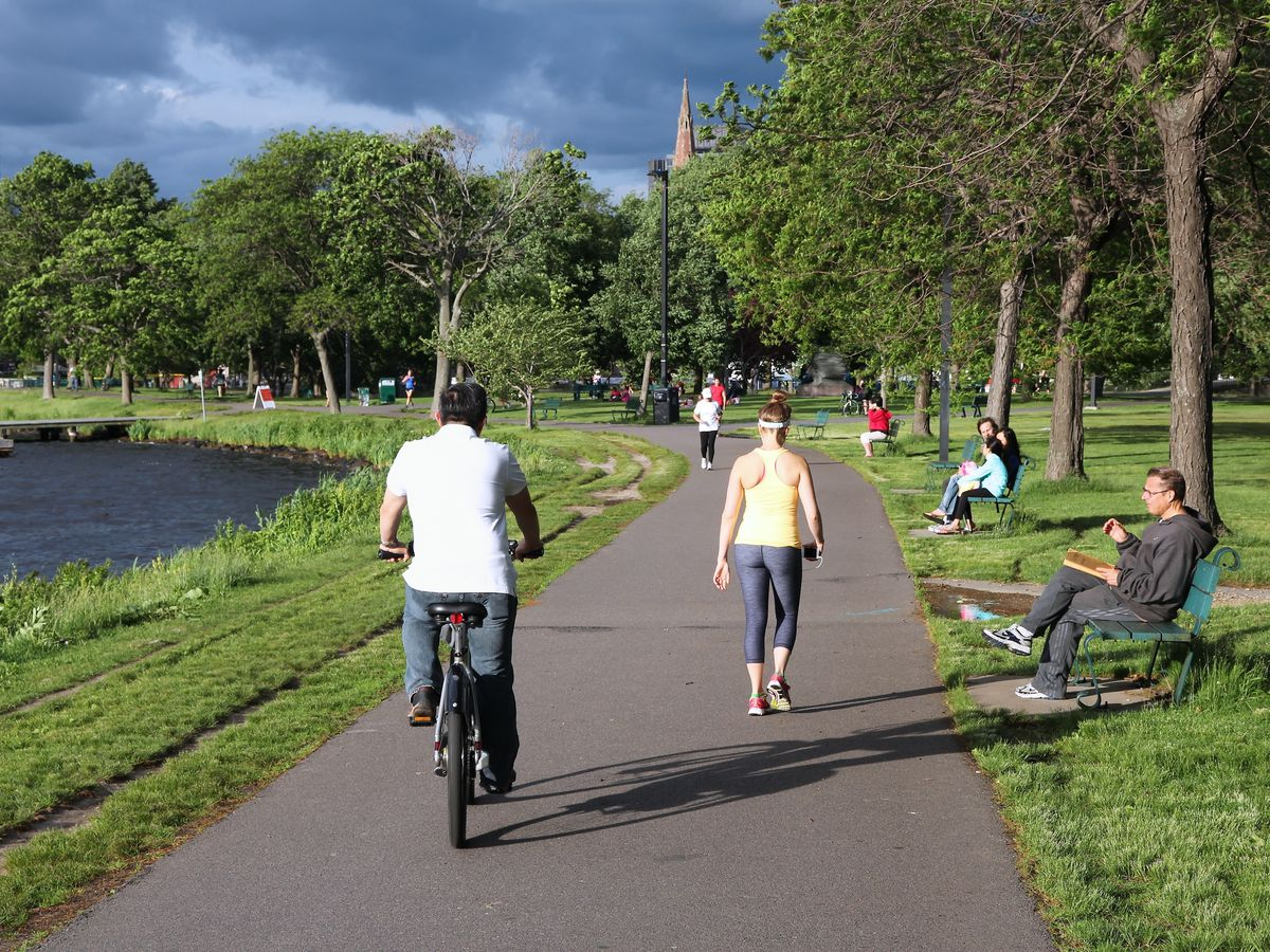 People ride bicycles along a river esplanade. The bike path has grass on both sides. There are trees on one side of the path.