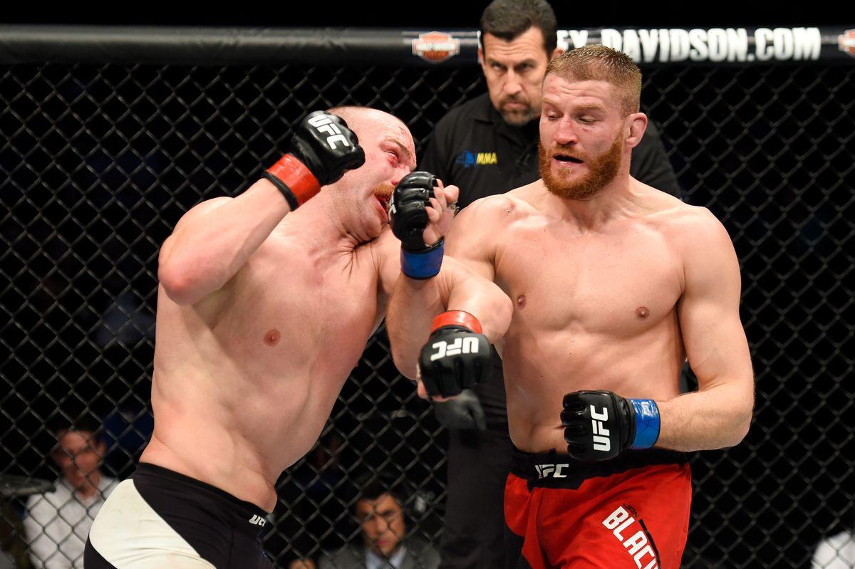 UFC 210: Cummins v Blachowicz