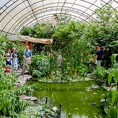 A tented area with lots of foliage and some butterflies, and there are people stepping through.