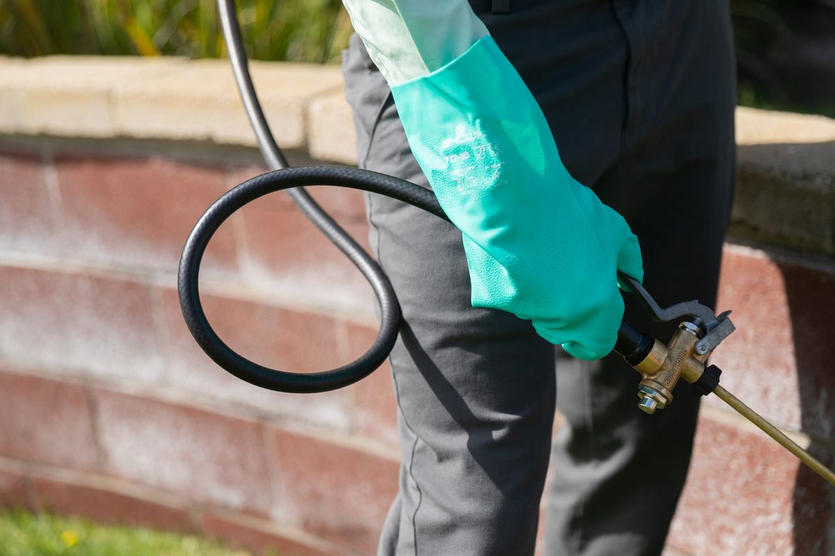 A pest control specialist wearing black pants and green gloves holds a wand used to spray pest control solution in a green yard with brick wall.