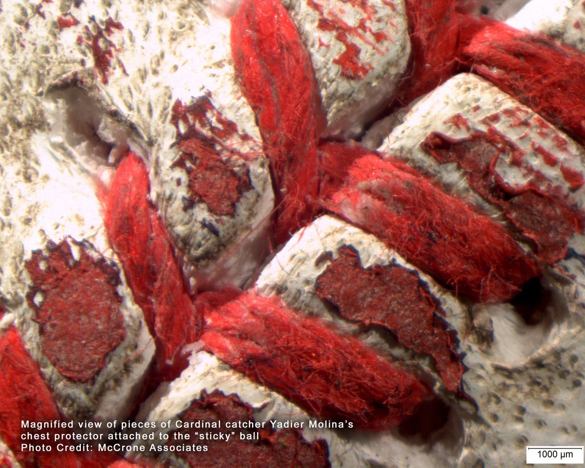 """Magnified view of pieces of Cardinal catcher Yadier Molina's chest protector attached to the """"sticky"""" ball. 