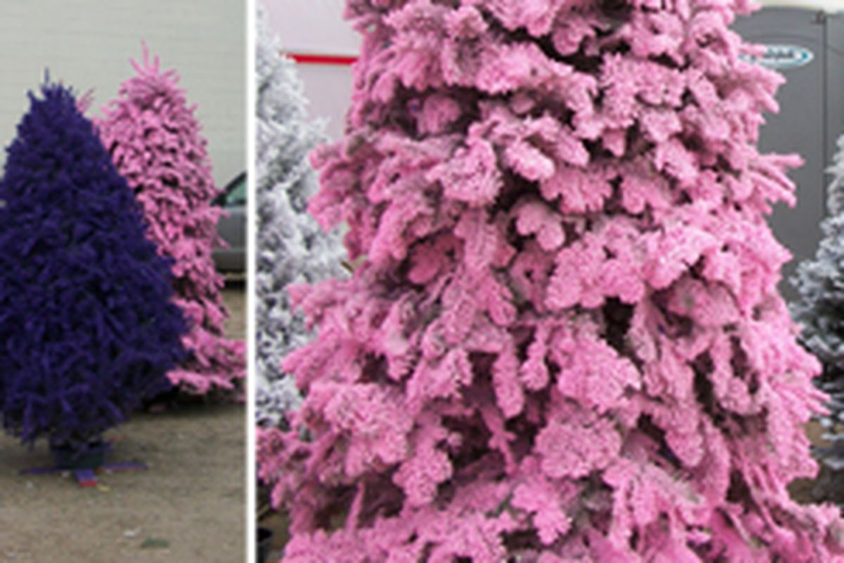 If Santa Claus and the Easter Bunny made a baby, these trees would be used to celebrate the baby's birth. They're from a lot on the corner of Fairfax and Beverly.