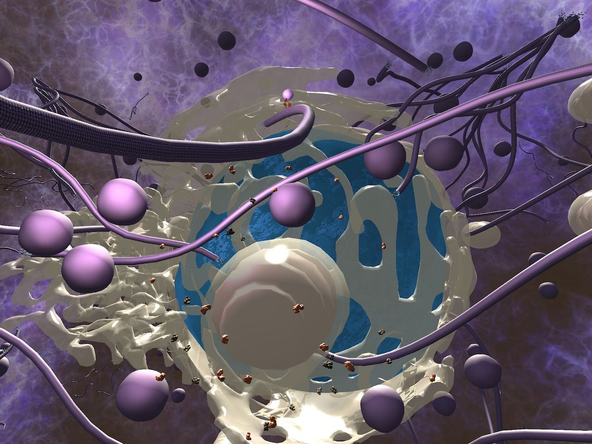 A 3-D model of a living cell, made for students inside of High Fidelity