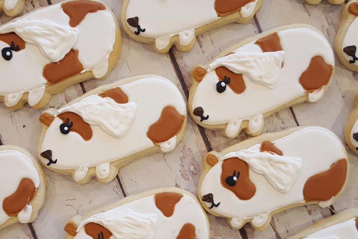 Guinea pig cookies from HayleyCakes and Cookies