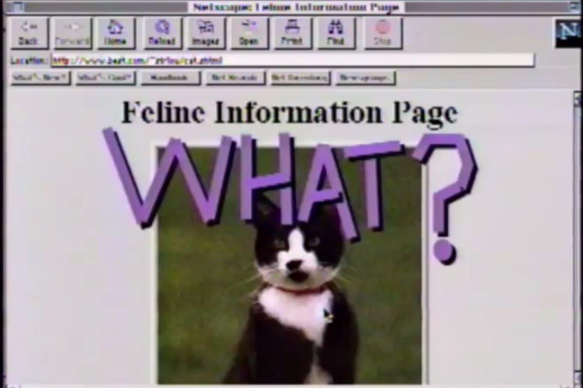 internet PSA