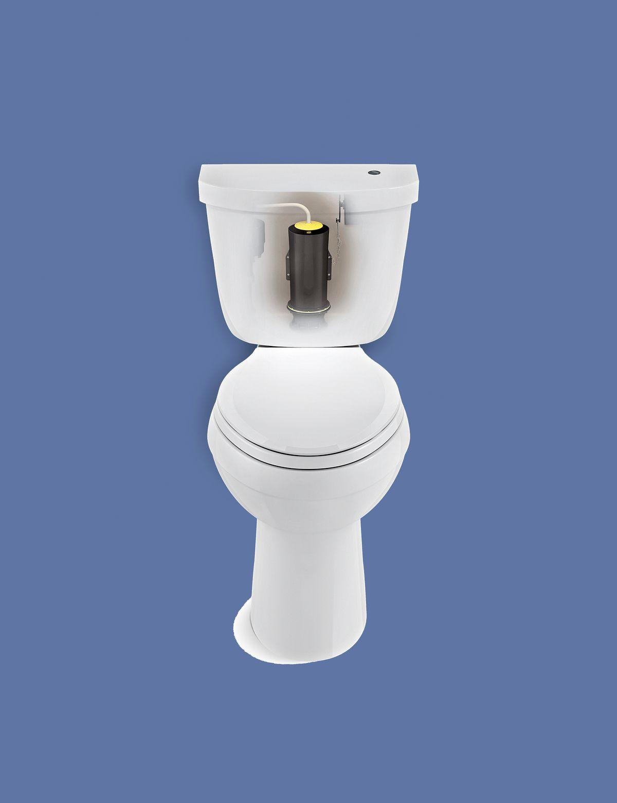 Canister-style flush valve.