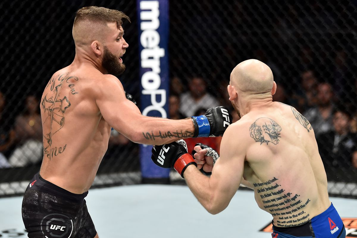 Image result for jeremy stephens ufc
