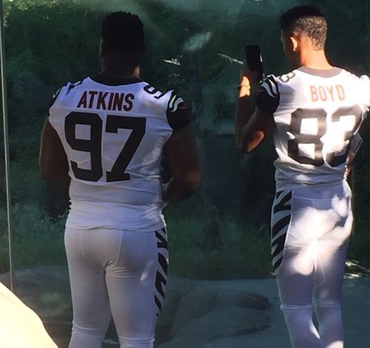 geno atkins color rush jersey