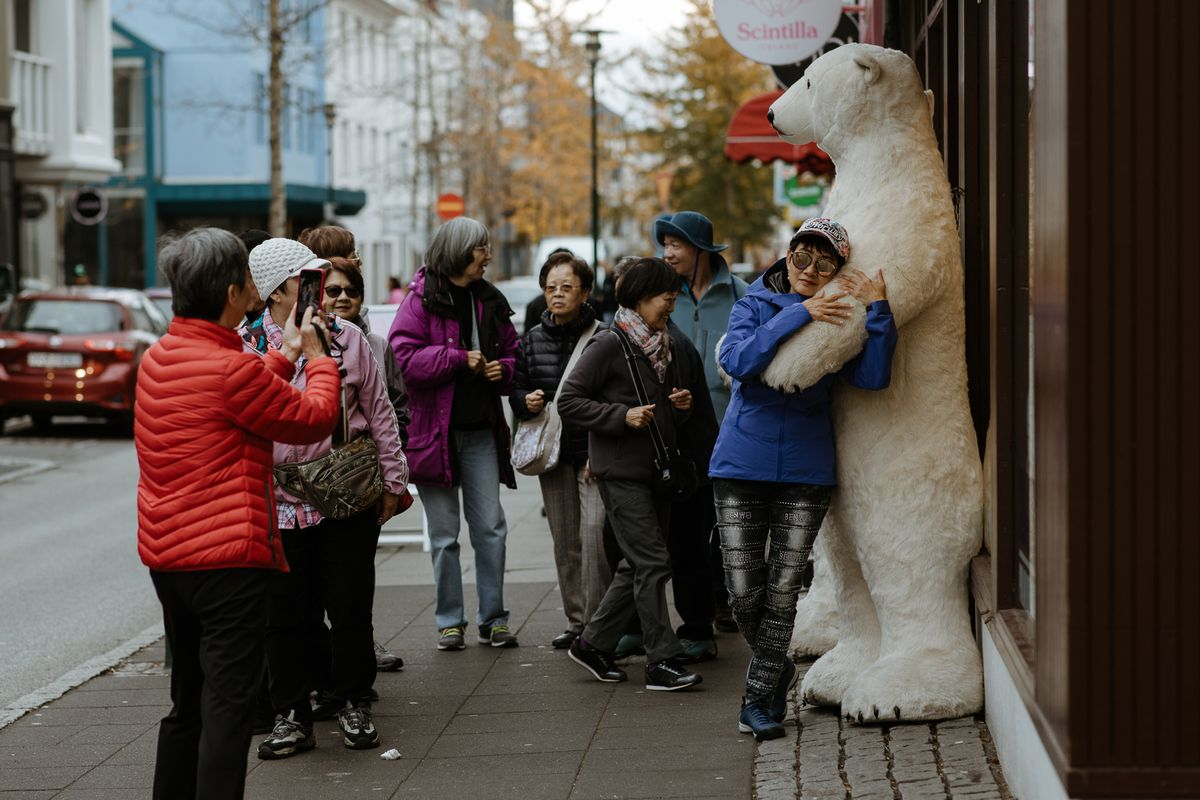A tourist on an Iceland shopping street hugs a large stuffed polar bear white getting their picture taken. Other tourists wait their turn to pose.