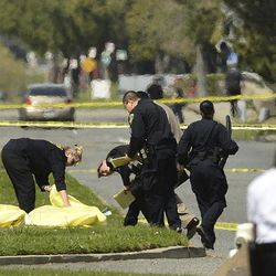 Oakland Police cover bodies near Oikos University in Oakland, Calif., Monday, April 2, 2012. A suspect was detained Monday in a shooting attack at a California Christian university that sources said has left at least five people dead.