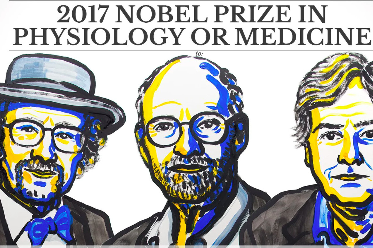 Αποτέλεσμα εικόνας για nobel medicine 2017