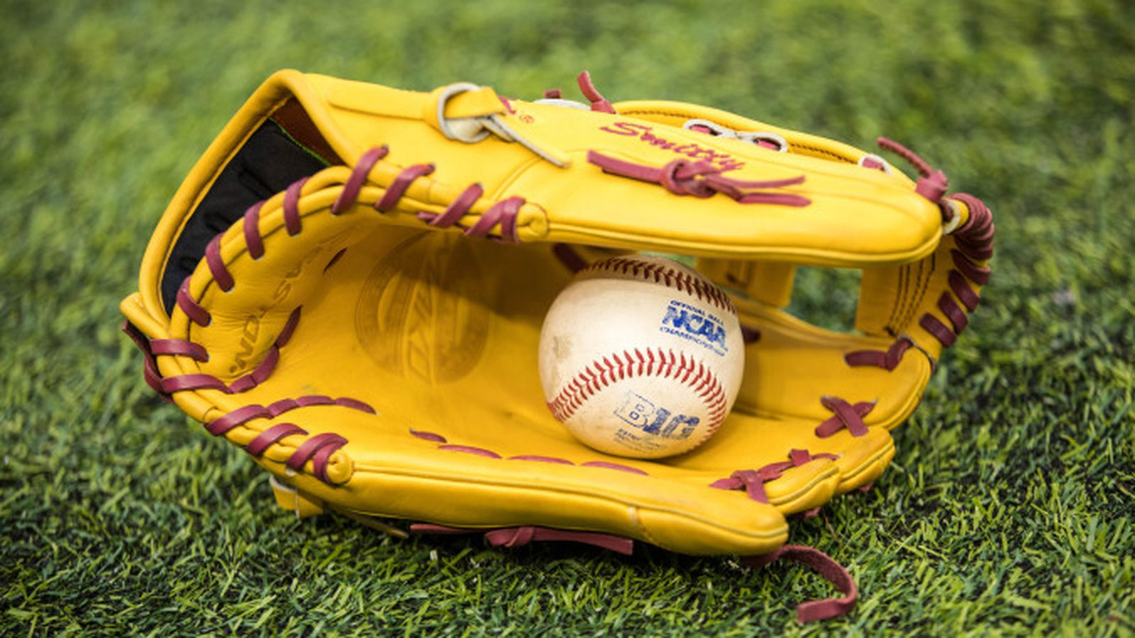 Gopher_baseball_glove.0