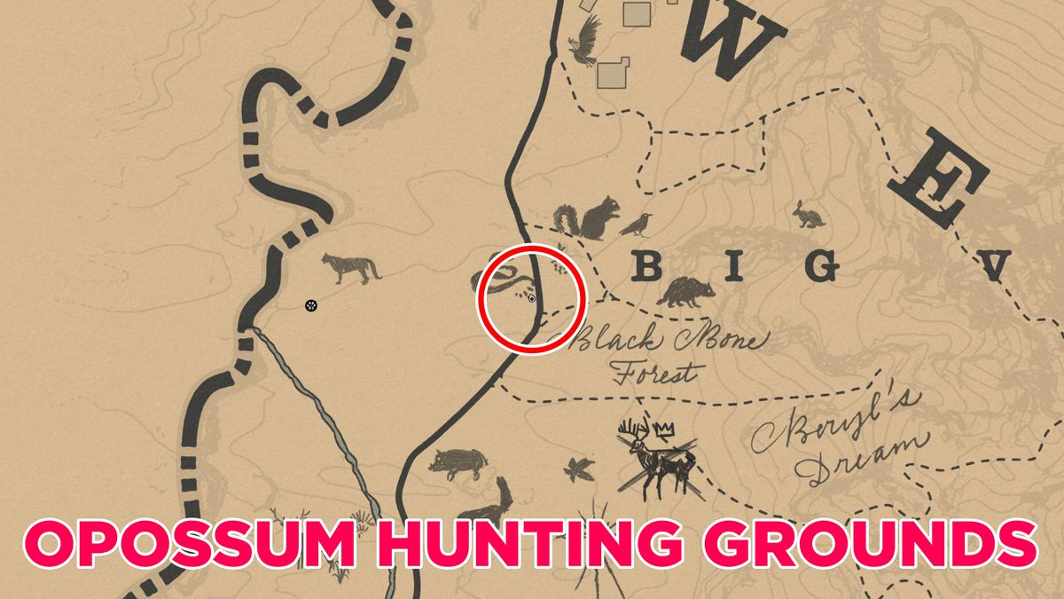 RDR2 opossum location and map guide (Master Hunter 9