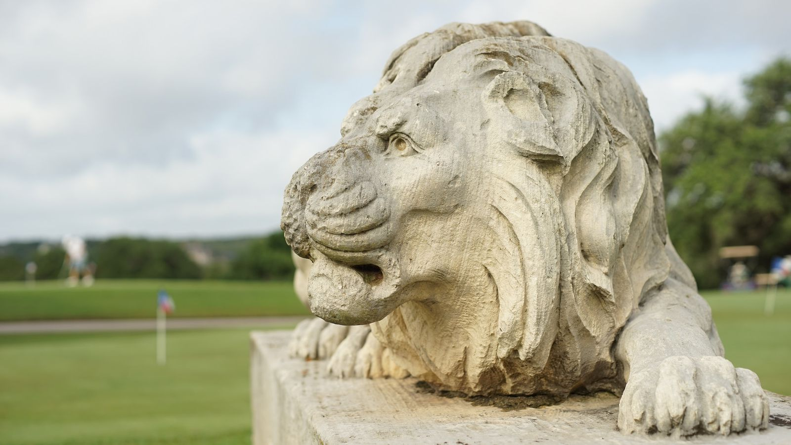Image result for lions municipal golf course
