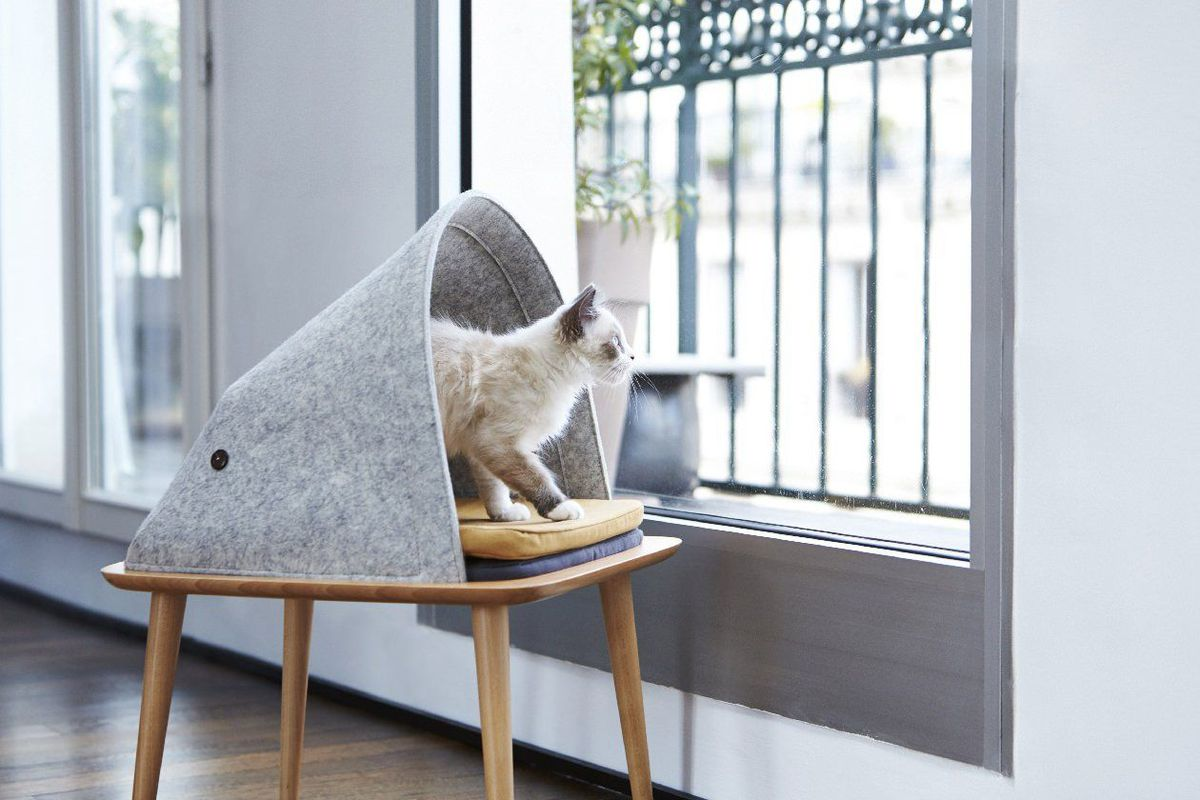 Tuft Paw Is Basically The West Elm Of Cat Furniture