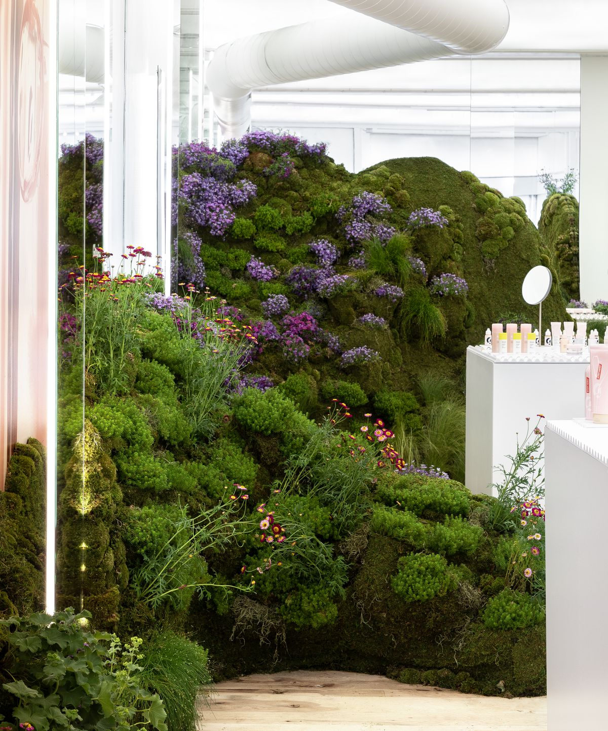 Kylie Jenner's roses, Glossier's flower hills: Plant ... on bathroom filled with plants, bedroom filled with plants, house full of plants, house books,