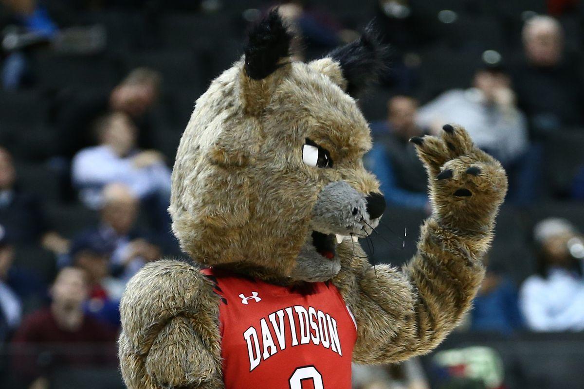 Davidson Wildcats mascot