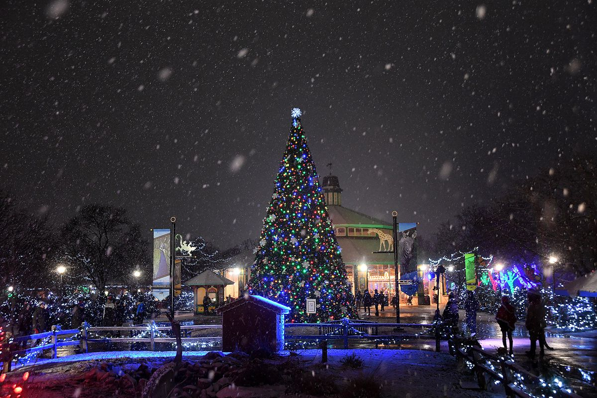 """A 38-foot-tall Talking Tree near the north entrance greets guests to Brookfield Zoo's """"Holiday Magic."""""""