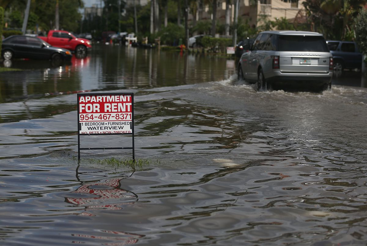 A flooded Florida street with cars lining the water-filled roadway.