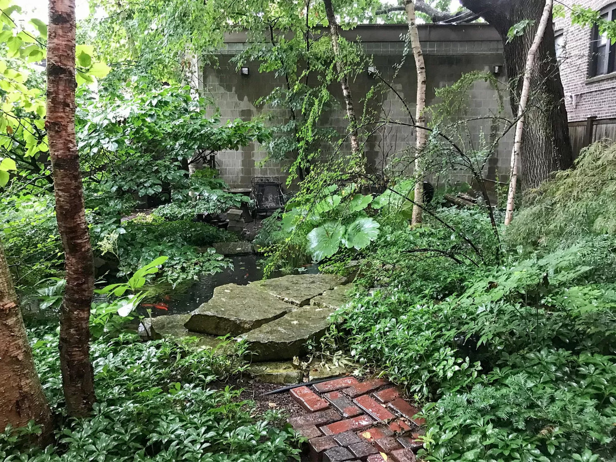 Chicago Apartments Lush Backyards And Gardens In Homes We D Rent Now Curbed Chicago